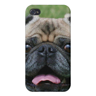 Pug dog Speck Case Cover For iPhone 4