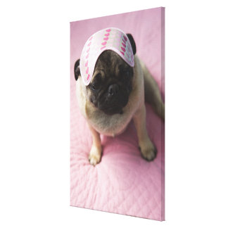 Pug dog with eye mask on head sitting on bed, canvas print