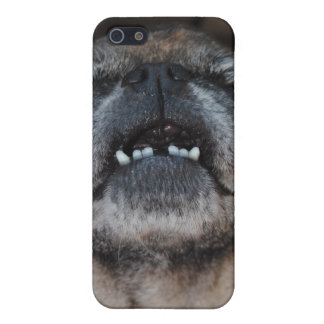 Pug Dog With Mouth Opened Speck Case Case For The iPhone 5