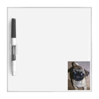 Pug Dry Erase Dry Erase Board