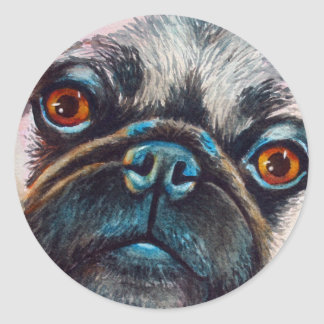 Pug Face Close up Classic Round Sticker