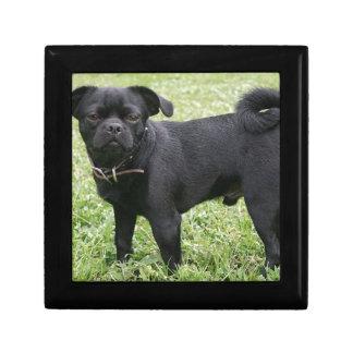 Pug Gift Box