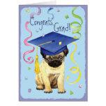 Pug Graduate
