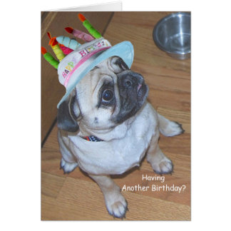Pug In A Birthday Hat Note Card