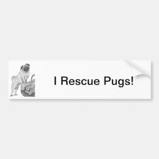 Pug in Black & White Bumper Stickers