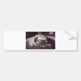Pug In Glasses Car Bumper Sticker