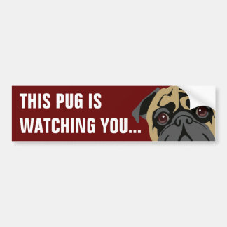Pug Is Watching Bumper Stickers