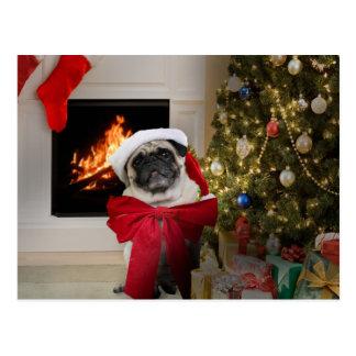 Pug Misha Christmas Card