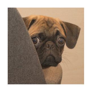 Pug peering around chair wood wall art