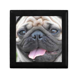Pug Pet Dog Gift Box