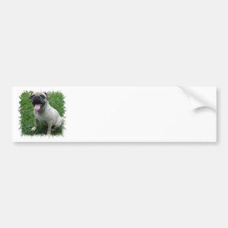 Pug Photo Bumper Sticker