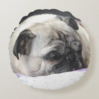 Pug Pug ~ photo Jean Louis Glineur Round Cushion