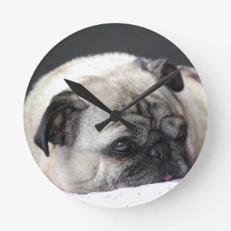 Pug pug - Photography: Jean Louis Glineur Wallclocks