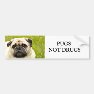 Pug, PUGS NOT DRUGS custom bumper sticker
