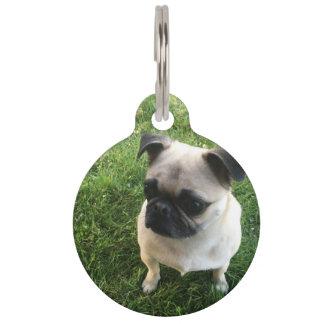 Pug Pup Pet ID Tag
