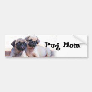 Pug puppies bumper sticker