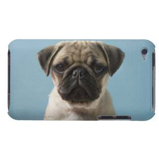 Pug Puppy Against Blue Background iPod Touch Cover