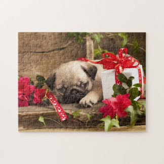 Pug Puppy and Gift  Box Jigsaw Puzzle