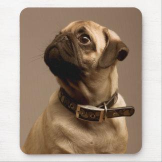 Pug Puppy Dog Canine Computer Mousepad