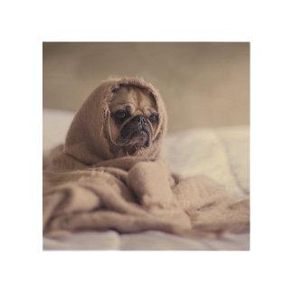Pug puppy Dog Cuddling in a warm towel Blanket Wood Wall Art
