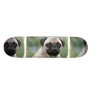 Pug Puppy Dog Skateboard