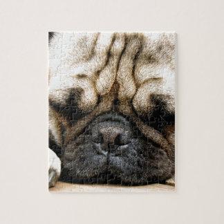Pug puppy jigsaw puzzle