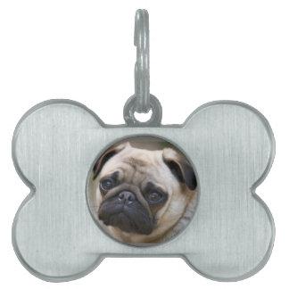 Pug Puppy Pet ID Tag