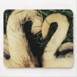 Pug Tails Shaped Into Heart Mouse Pad