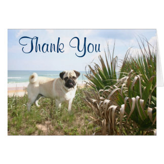 Pug Thank You Card Beachgrass