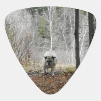 Pug Walking Through The Woods Guitar Pick