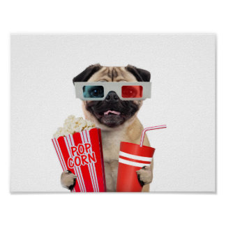 Pug watching a movie poster