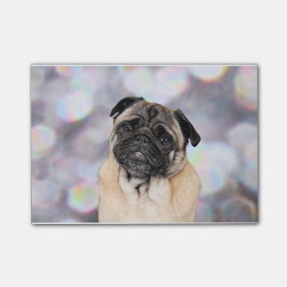 Pug - Willy Post-it® Notes
