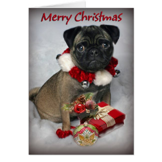 Pug Wishes you Merry Christmas Card