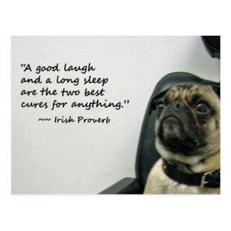 Pug with Irish Proverb Postcard