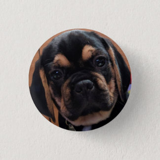 Puggle 3 Cm Round Badge