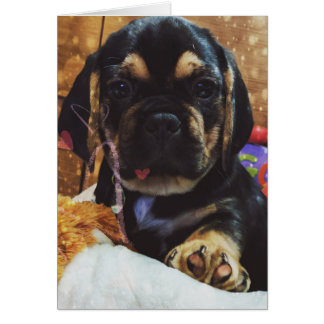 Puggle love card