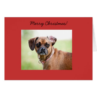 Puggle Merry Christmas Card