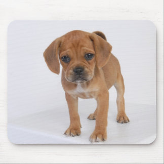 Puggle Puppy Pad Mouse Pad