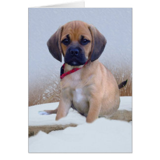 Puggle snow scene card