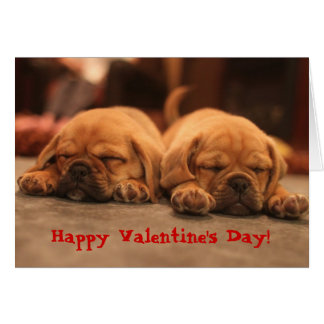 Puggle Valentine's Day Card
