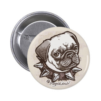 Pugnacious Pug by Mudge Studios Pinback Button
