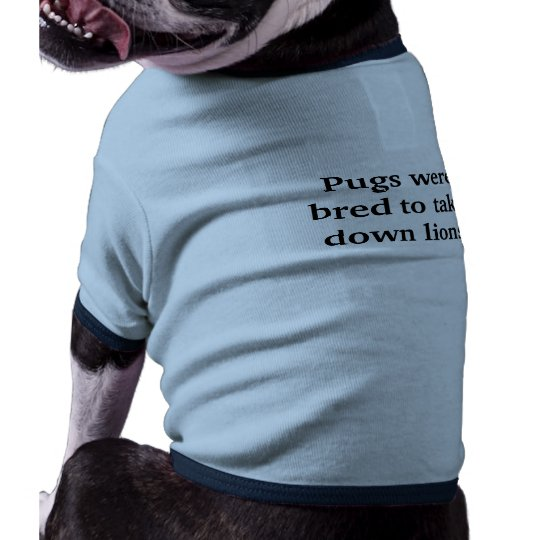Pugs were bred to take down lions ringer dog shirt