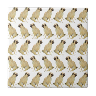 Pugs White Tile