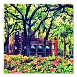Pulaski Square, Savannah Photo Print