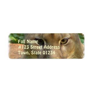 Puma Cat Return Address Mailing Label Return Address Label