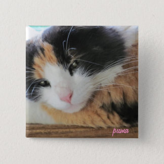 Puma Cute Calico Cat 15 Cm Square Badge