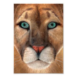 Puma Photo Print