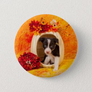 Pumkin Puppy 6 Cm Round Badge