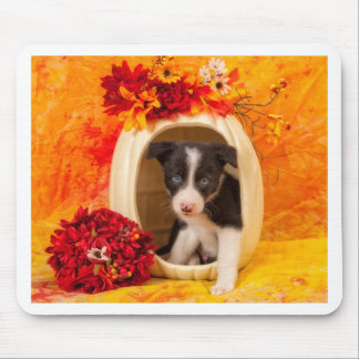 Pumkin Puppy Mouse Pad