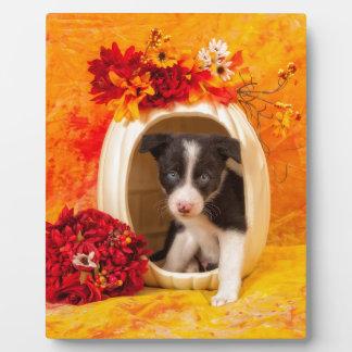 Pumkin Puppy Photo Plaque